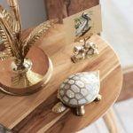 Doosje Schildpad – Parelmoer // À la